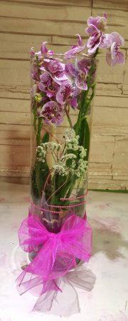 Orchidea üveg hengerben