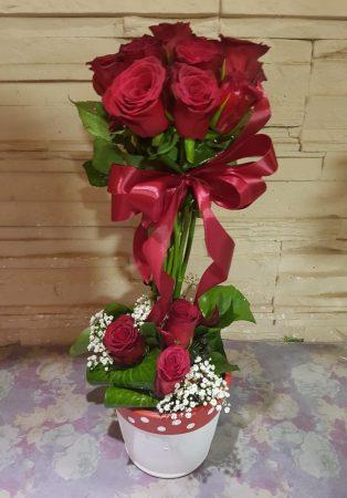 Rózsa gömbfa