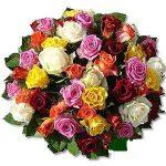 Rózsa kavalkád